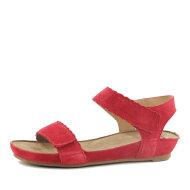 Cashott - Cashott 21010 rød dame sandal
